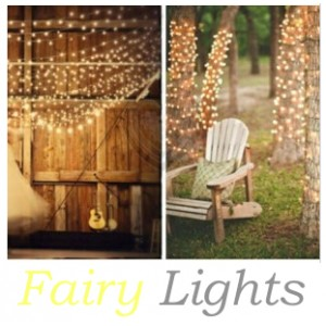 Warm White LED String/Fairy Lights Hire